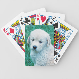 Golden Retriever Puppy Playing Cards Deck