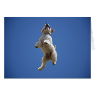 Goldendoodle Jumping Greeting Card
