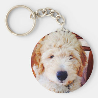 Goldendoodle Puppy Key Ring