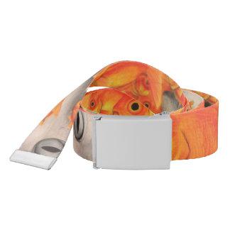 Goldfish belt
