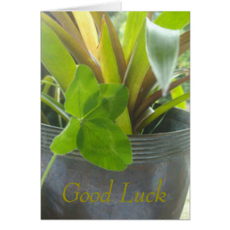 Good luck, 4 leaf clover and pot plant greeting card