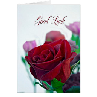 Good Luck card with a red rose