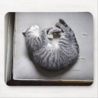 Good Luck Cat Mousepad