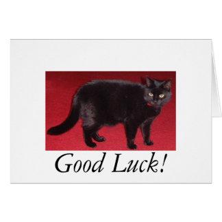 Good Luck cat Note Card