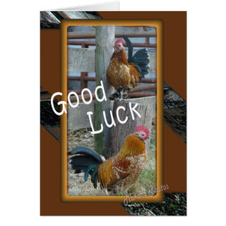 Good Luck-customize Greeting Card