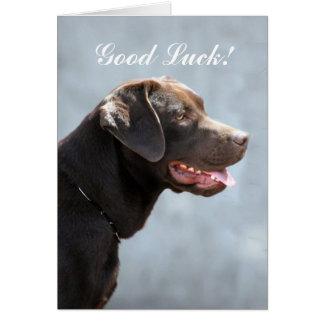 Good Luck Labrador Retriever Dog Card