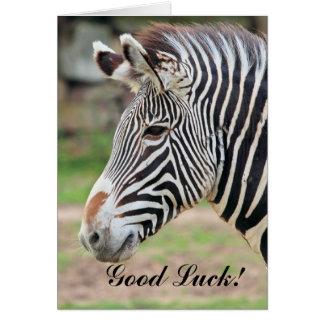 Good Luck Zebra animal Card
