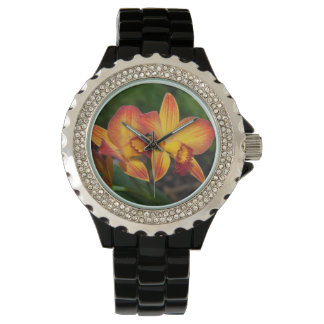 Gorgeous Orange Yellow Rhyncattleanthe Orchid Watches