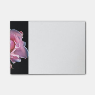 Gorgeous Pink Rose on Black. Post-it® Notes
