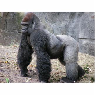 gorilla desk guard standing photo sculpture