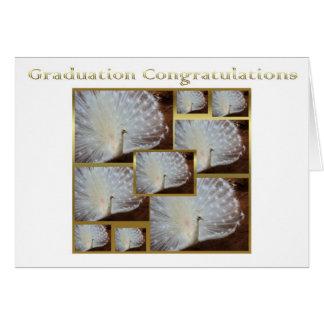 Graduation Congratulations Albino peacock proud Card