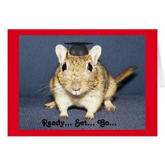 Graduation Gerbil Greeting Card