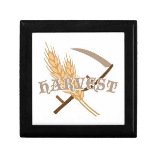 Grain Harvest Gift Box