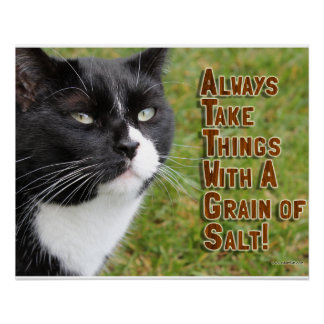 Grain of Salt Cat Advice Perfect Poster