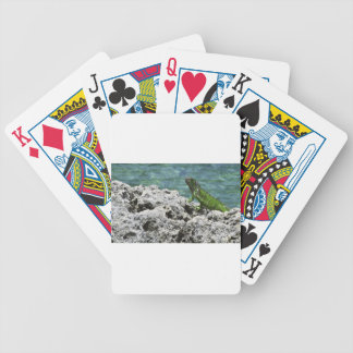 Grand Cayman Islands Green Iguana Poker Deck