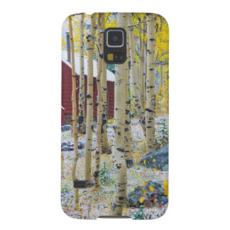 Grand Mesa Solitary cabin in a forest Galaxy S5 Cases