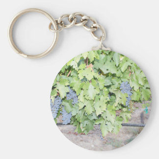 Grape vine nature and wine lover photograph key ring