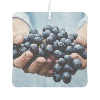 Grapes / Foodie car air freshner Car Air Freshener