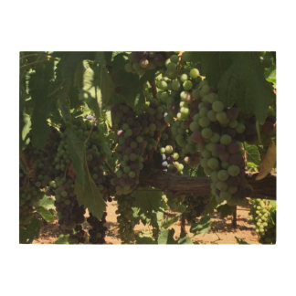 Grapes on Vine Wood Wall Art