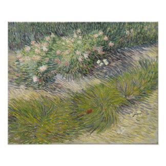 Grass and Butterflies by Vincent Van Gogh Photo Print
