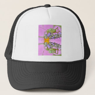 Grasshopper above water with reflection trucker hat