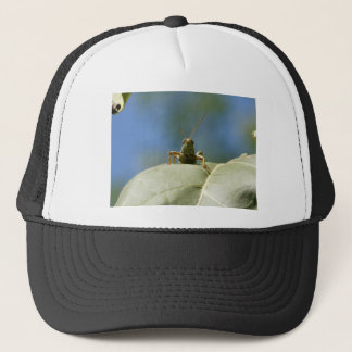 grasshopper front view trucker hat