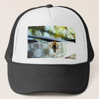grasshopper stand off trucker hat