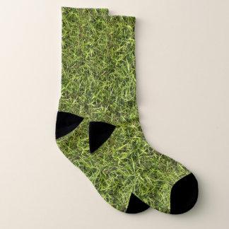 Grassy 1