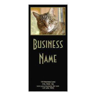 Gray Tabby Close Up Photograph Custom Rack Cards