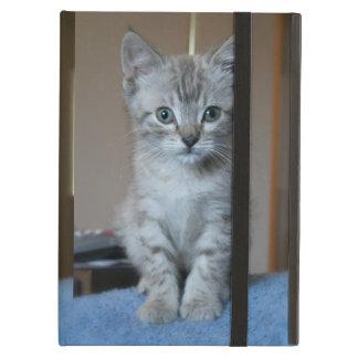 Gray Tabby Kitten Case For iPad Air