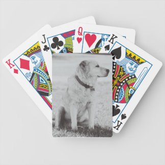Grayscale Sandy Bicycle Playing Cards