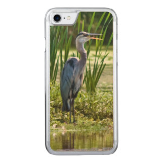 Great Blue Heron Bird at the Pond Carved iPhone 8/7 Case