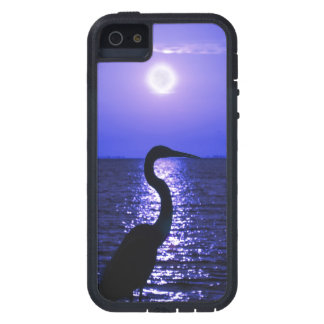Great Blue Heron in the Moonlight iPhone 5 Cases