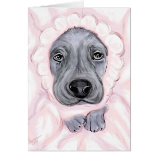 Great Dane Baby Blue Girl Announcements