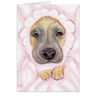 Great Dane Baby Fawn Girl Announcements