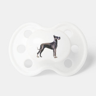 Great Dane - black standing - cropped ears Dummy