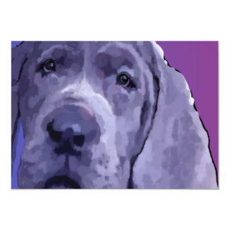 Great Dane Blue Puppy Face Post Cards