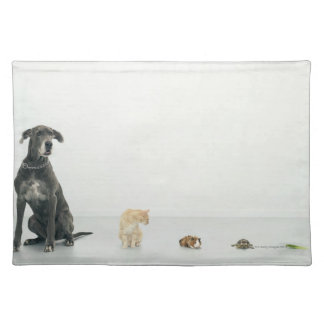 Great Dane, cat, guinea pig, tortoise and slug Placemat