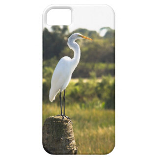 Great Egret at Viera Wetlands iPhone 5 Cases