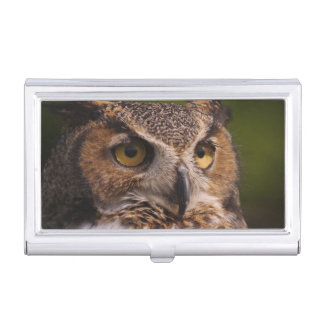 Great Horned Owl, Bubo virginianus Business Card Holder