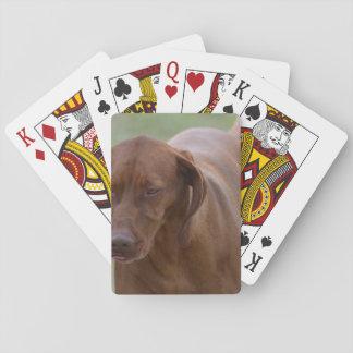 Great Vizsla Dog Playing Cards