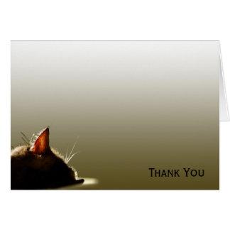 Green and Grey Cat Nap Card