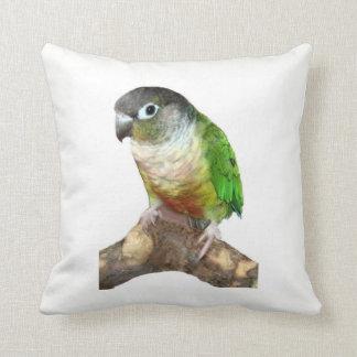Green Cheek Conure Cushion