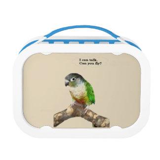 Green Cheek Conure Lunch Box