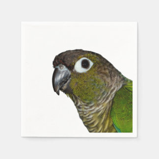 Green Cheeked Conure Disposable Serviettes