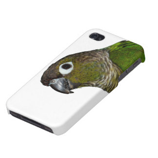 Green Cheeked Conure iPhone 4 Cases