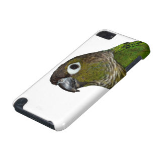 Green Cheeked Conure iPod Touch (5th Generation) Cover