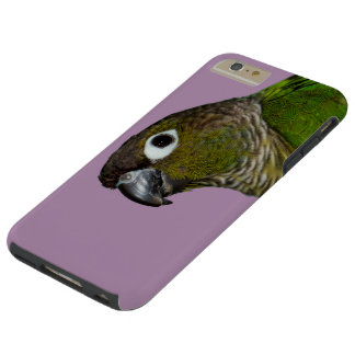 Green Cheeked Conure Tough iPhone 6 Plus Case