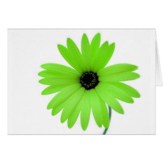 Green daisy card