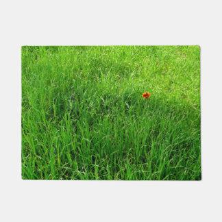 Green Grass Photograph Doormat